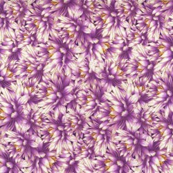 Packed Water Lillies - PURPLE