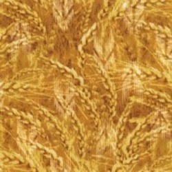 GOLDEN WHEAT - YELLOW