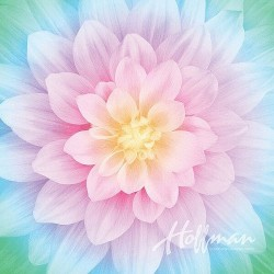 "104"" Backing-Spectrum Digital SQ Flower(2.7x2.7m)-OPAL"